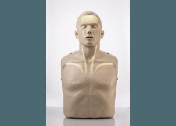 Brayden CPR Manikin with Illumination Lights
